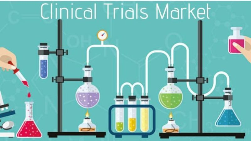 Search assignment successfully completed: Segment Manager for Clinical Trial Markets